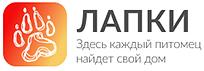 В России разработали мобильное приложение для поиска пропавших животных