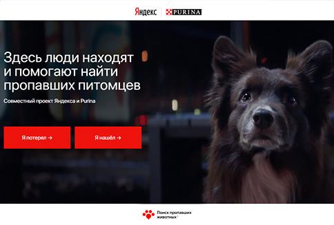 Purina и «Яндекс» создали сервис, который поможет хозяевам в поиске потерявшихся питомцев