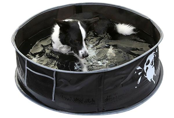 «АС-Маркет» представил складной бассейн для собак