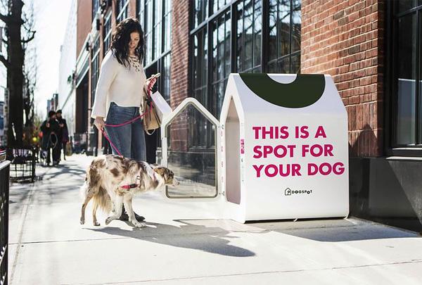 «Умные будки» DogSpot появятся ещё в 13 городах США