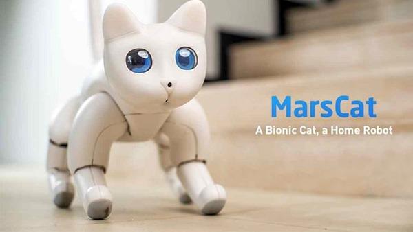 Вслед за роботом-собакой приходит робокот