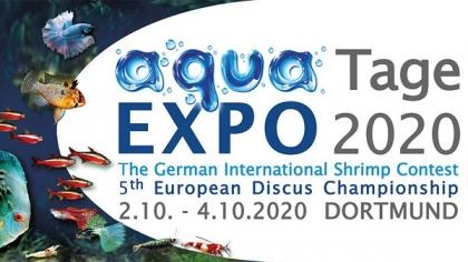 В октябре состоится аквариумная выставка Aqua Expo