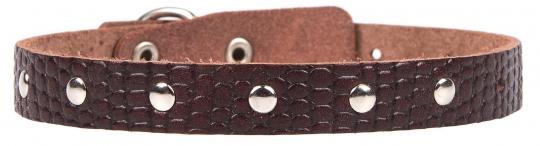 Ошейник 14 мм РЕПТИЛИЯ украшенный