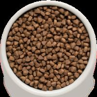 Сухой корм GRANDORF (ГРАНДОРФ) для кошек Ягнёнок с рисом Indoor_1