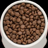 Сухой корм GRANDORF (ГРАНДОРФ) для собак Ягнёнок с рисом Юниоры_1